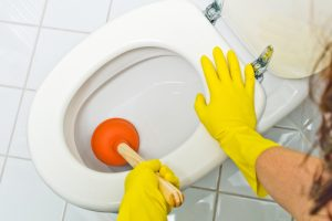 Make sure to always clean the toilet to prevent it being clogged.